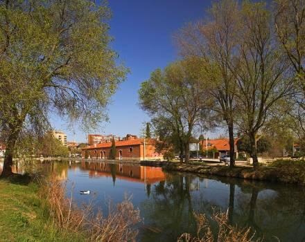 Ramalillo del Canal de Castilla en Palencia
