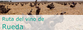 Ruta del Vino de Rueda. This link opens in a popup window