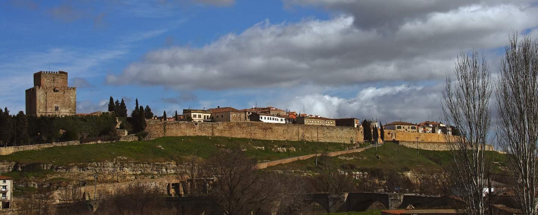 Ciudad Rodrigo. Ciudad Rodrigo. Castillo y vista general