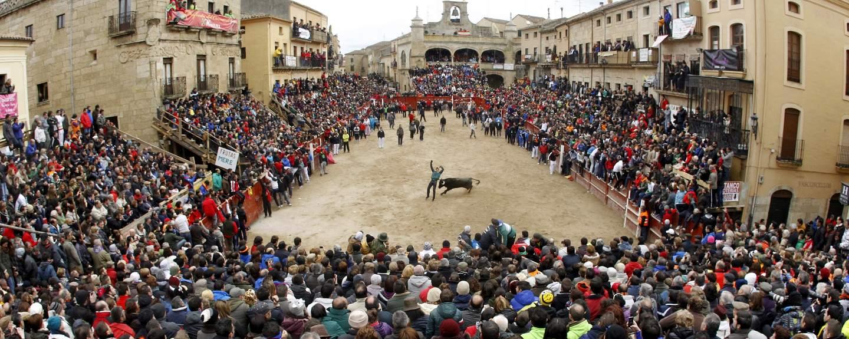 Resultado de imagen de carnaval del toro de ciudad rodrigo