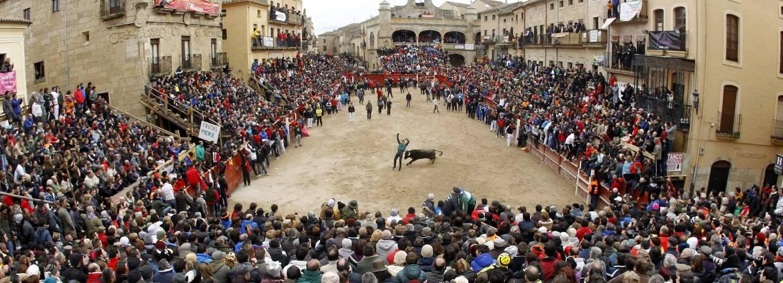 Fiestas tradicionales carnaval del toro portal de for Oficina de turismo ciudad rodrigo