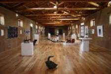 Sala-de-exposiciones-1