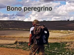 bono_peregrino