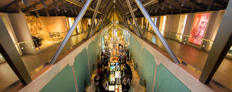 Museo del Vino Pagos del Rey