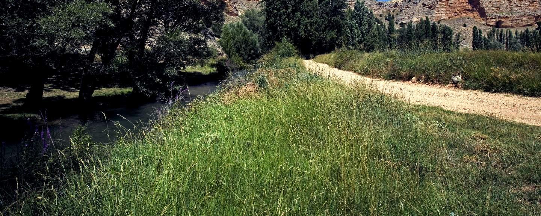 Hoces del Río Riaza. Senda Entre Puentes
