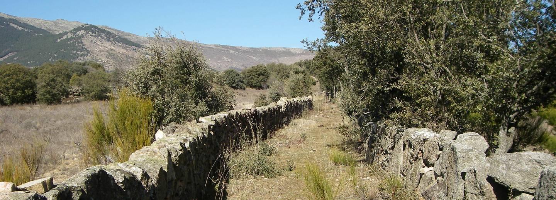 Los regajos de navalmoral de la sierra portal de turismo - Navalmoral de la sierra ...