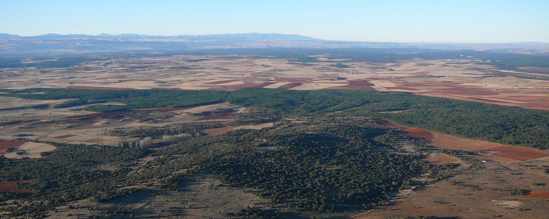 Ruta entre Sabinares. Tramo Muriel de la Fuente - Abioncillo de Calatañazor
