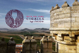 CastillosdelVino