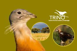 Ven a Castilla y León. Descubre sus aves