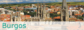 Burgos. Este enlace se abrirá en una ventana nueva