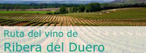 Ruta del Vino de Ribera del Duero. Este enlace se abrirá en una ventana nueva