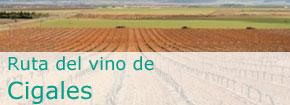 Ruta del Vino de Cigales. Este enlace se abrirá en una ventana nueva