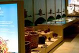 Museos del vino